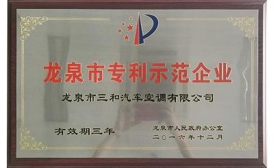 龙泉市专利示范企业